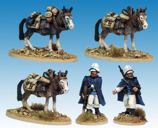 Legion Mounted Company Mule holders.